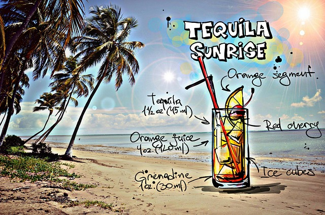 Types of Tequila2