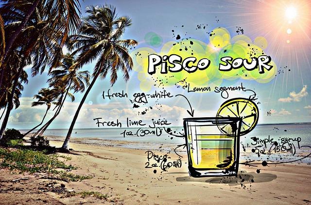 Best Brands of Pisco2